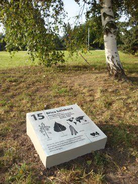 Náhledový obrázek arboretum Pankrác 1