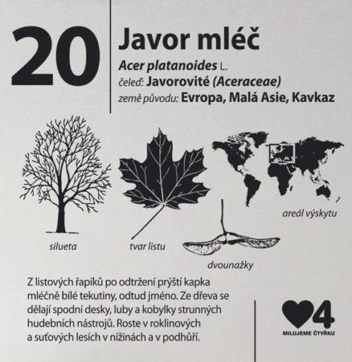 Náhledový obrázek arboretum Pankrác 3